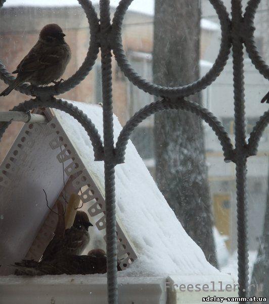 Птичья столовая из подручных материалов