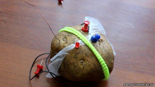 Схемы радио из картошки